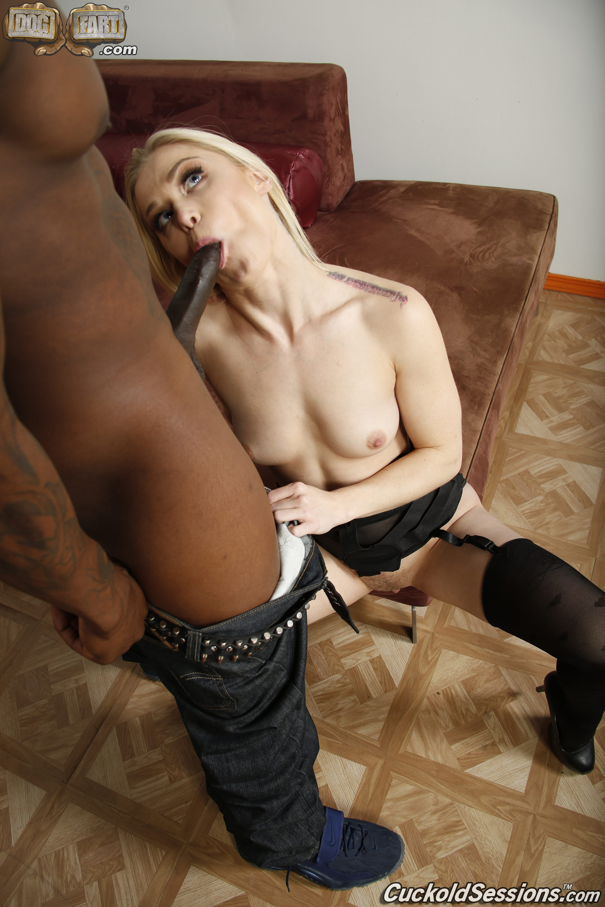 galleries CuckoldSessions content ash hollywood pic 10